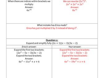 Erica's Errors On Algebraic Expressions
