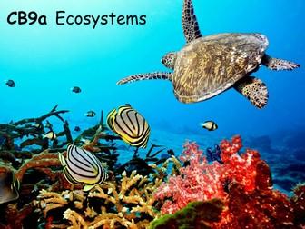 Edexcel CB9a Ecosystems