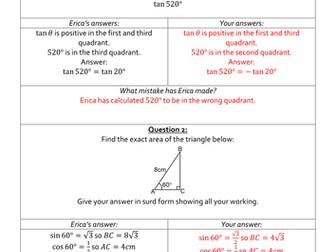 Erica's Errors On Trigonometric Identities and Equations