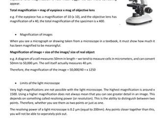 Microscopes comprehension activity
