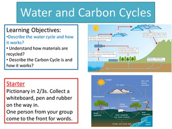 Carbon and Water Cycles