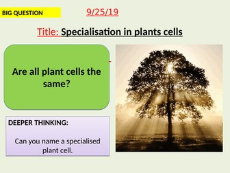 AQA new specification-Specialisation in plant cells-B1.5
