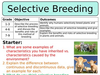 NEW AQA GCSE Trilogy (2016) Biology - Selective breeding