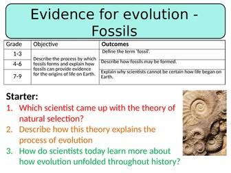 NEW AQA GCSE Trilogy (2016) Biology - Evidence for evolution: Fossils