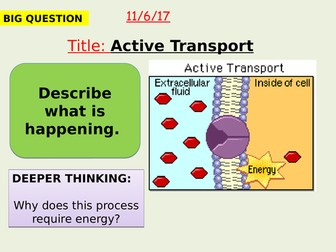 AQA new specification-Active transport-B1.9