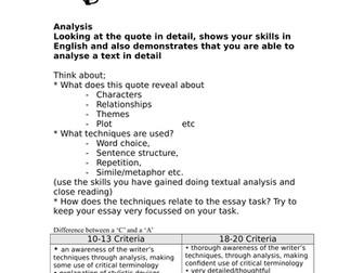 Critical Essay Skills