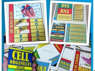 Biology Notebook Foldables