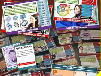 Cell Reproduction, Cell Cycle, Mitosis, and Meioisis Activity Flip Book