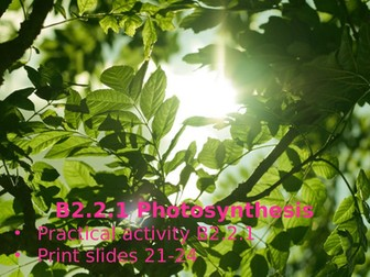 Activate 2 B2.2.1 Photosynthesis