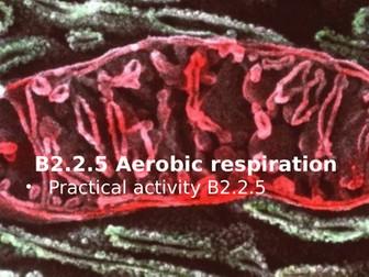 Activate 2 B2.2.5 Aerobic respiration
