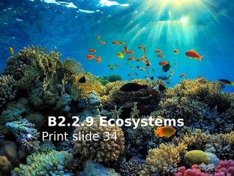 Activate 2 B2.2.9 Ecosystems