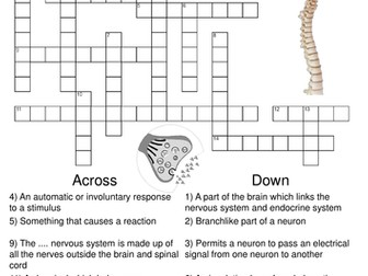 Biology Crossword Puzzle Bundle. Includes 10 different ...
