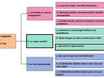 La cyber-société- Qui sont les cybernautes- A Level French- Y1/ AS