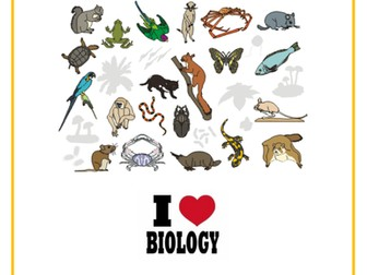 ANIMAL CLASSIFICATION: FuseSchool Biology Video Guide