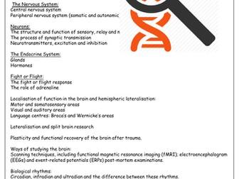 Year 2 Biopsychology AQA Psychology