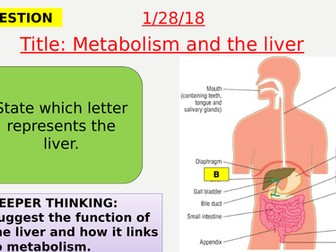 AQA new specification-Metabolism and the liver-B9.4