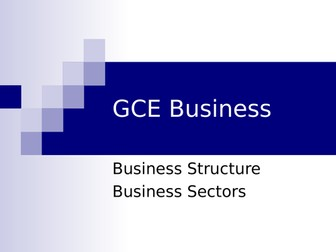 Business Structure and Business Sector
