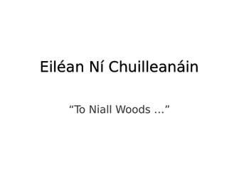 """Eiléan Ní Chuilleanáin's """"To Niall Woods ..."""" Summary and analysis"""