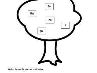 Reading Keywords 1 - EYFS Words