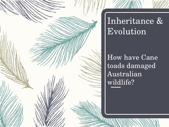 Inheritance & Evolution - selecting information and developing an argument