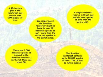 Causes of Deforestation - AQA GCSE - Living World