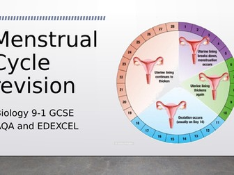 Biology Menstrual Cycle Revision for AQA and EDEXCEL + practise questions