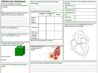 Edexcel CB8 Revision Worksheet
