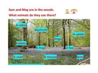 Yr 1 Phonics - Woodland Animals Reading Challenge