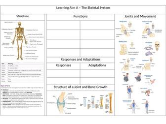 BTEC Sport L3 Unit 1 - Skeletal System