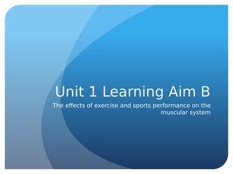 Level 3 BTEC Sport Unit 1 - Muscular system