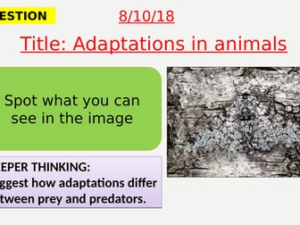 AQA new specification-Adaptation in animals-B16.7