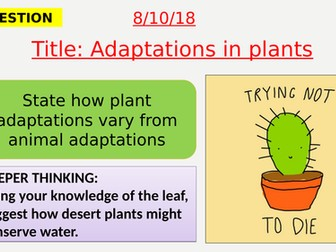 AQA new specification-Adaptation in plants-B16.8