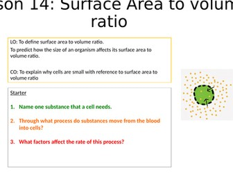 Surface area to volume ratio practical