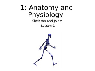 GCSE PE Skeleton and Joints, lesson plans and matching worksheets for CIE