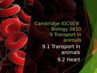 Cambridge IGCSE® Biology 0610 9 Transport in animals, 9.1 Transport in animals, 9.2 Heart