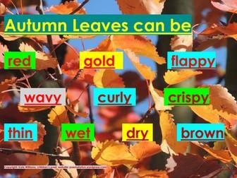 Phonics - Autumn Leaves words - mid-level