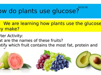 B8.3 How plants use glucose