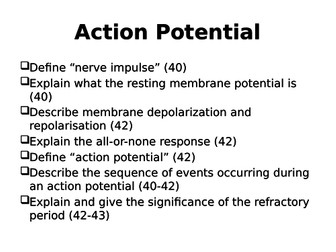 Neurons - Action Potential