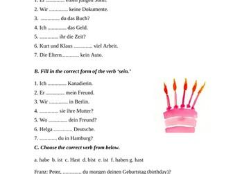 German Worksheet: Present Tense of 'haben' and 'sein'