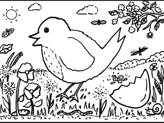 Baby robin colouring sheet