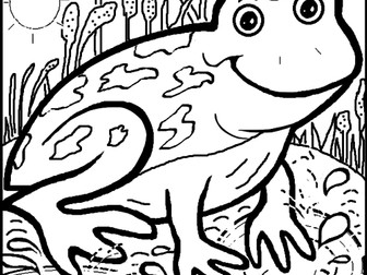 Frog Colouring Sheet