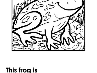 Frog Writing + Colouring Sheet - 1 line