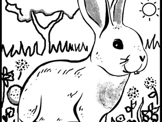 Rabbit Colouring Sheet