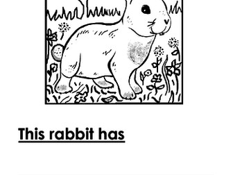 Rabbit Writing + Colouring Sheet - 1 line
