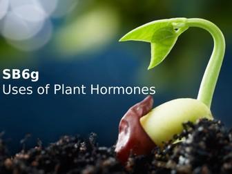 Edexcel SB6g Uses of Plant Hormones