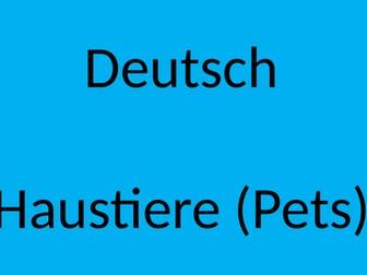 German Cover Work PowerPoint Haustiere (Pets)