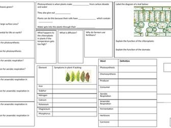 KS3 Ecosystems Revision Mat