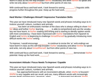 Subject-Specific Report Writing Examples & Templates (Spanish, Geography, History etc.)