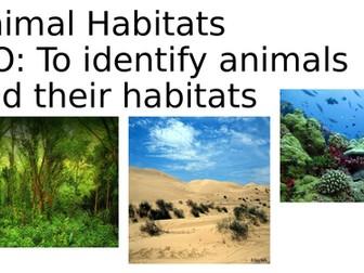 Animal Habitats KS1