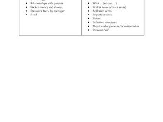 French -KS3- revision - vocabulary - grammar (Allez 2 - module 1-2-3-4-5)